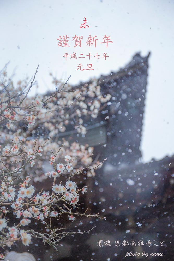 ブログ年賀状_MG_4759-2