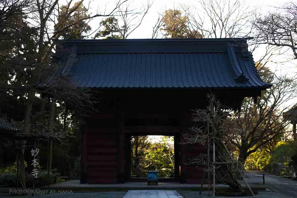 鎌倉_MG_8678