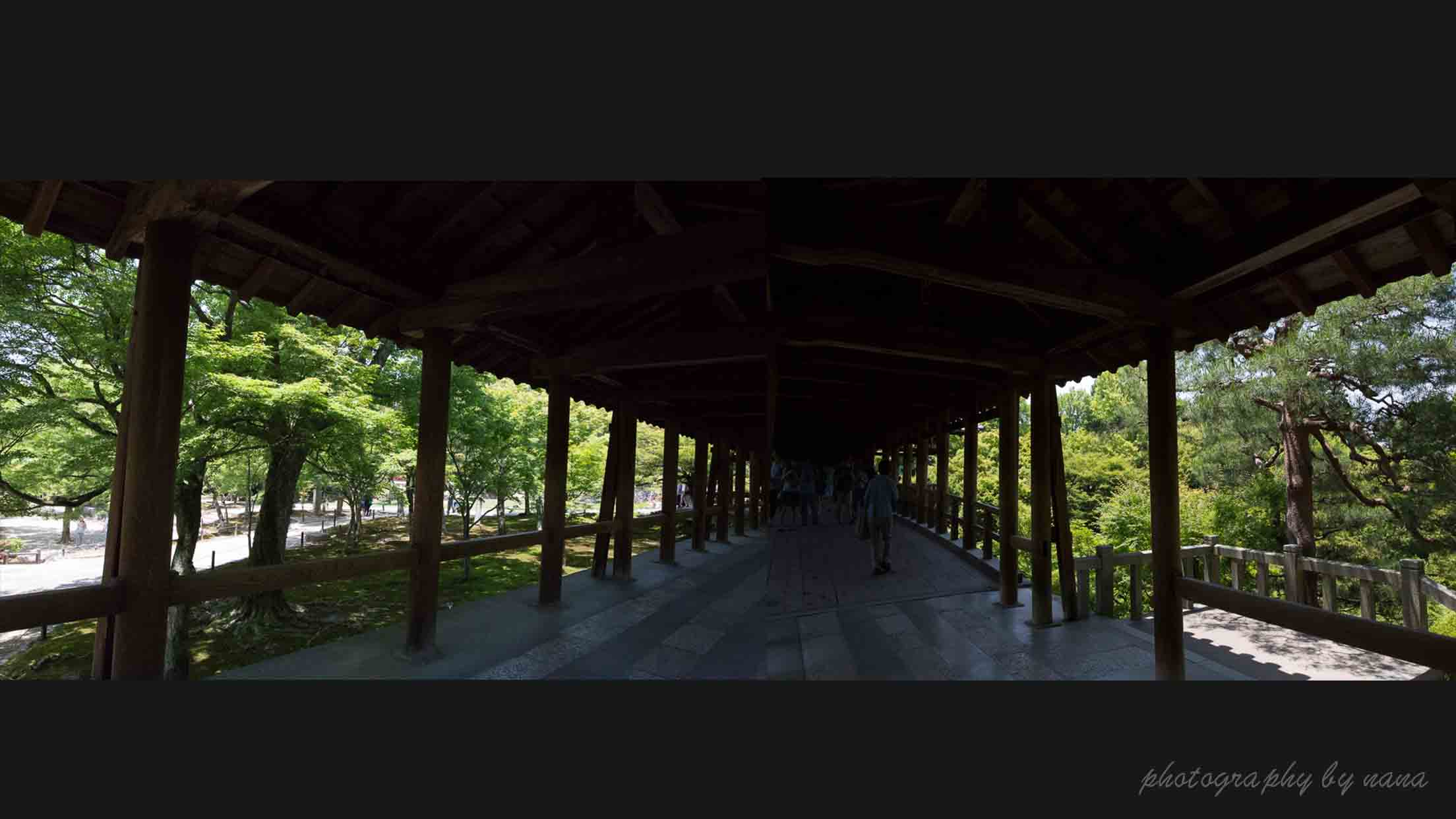 京都新緑 2