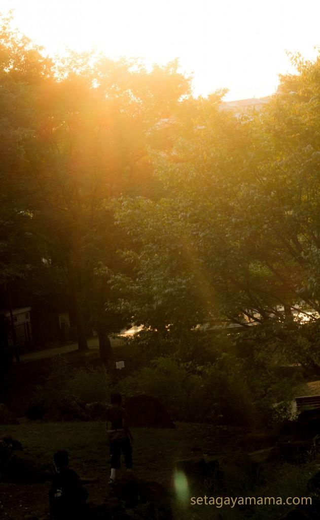 夏の終わり IMG_1054
