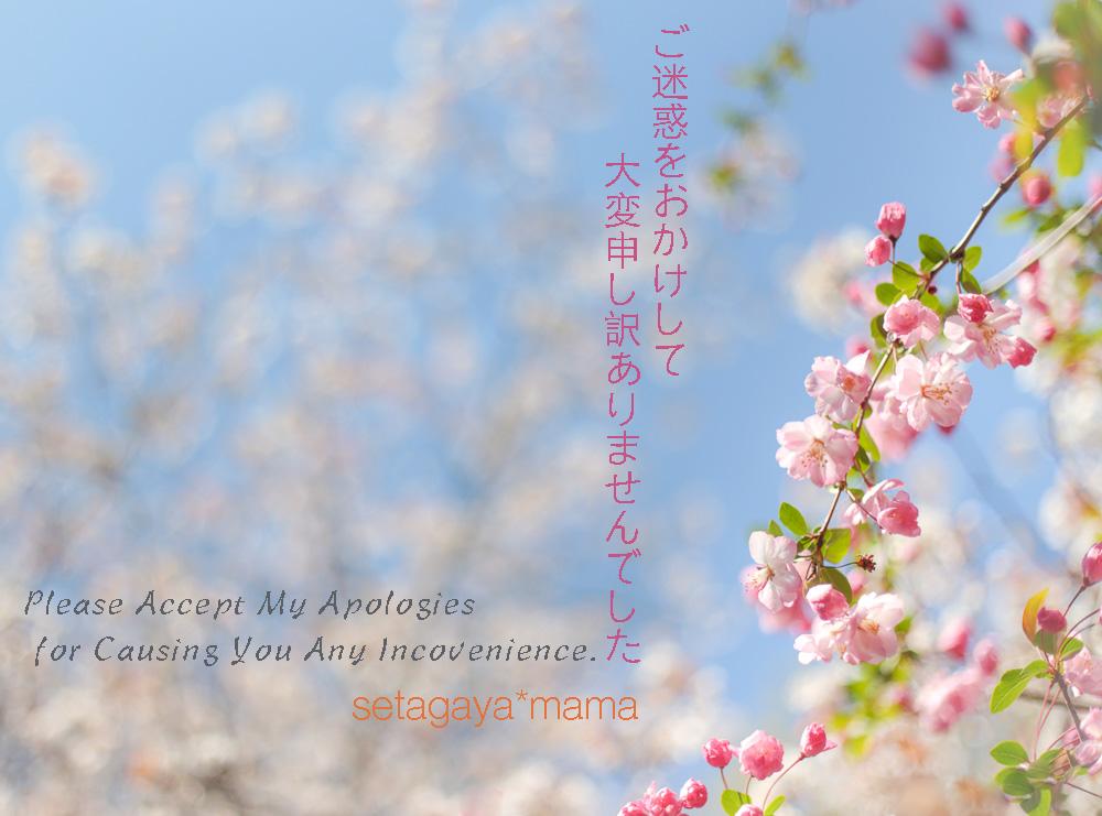 お詫び_MG_8631