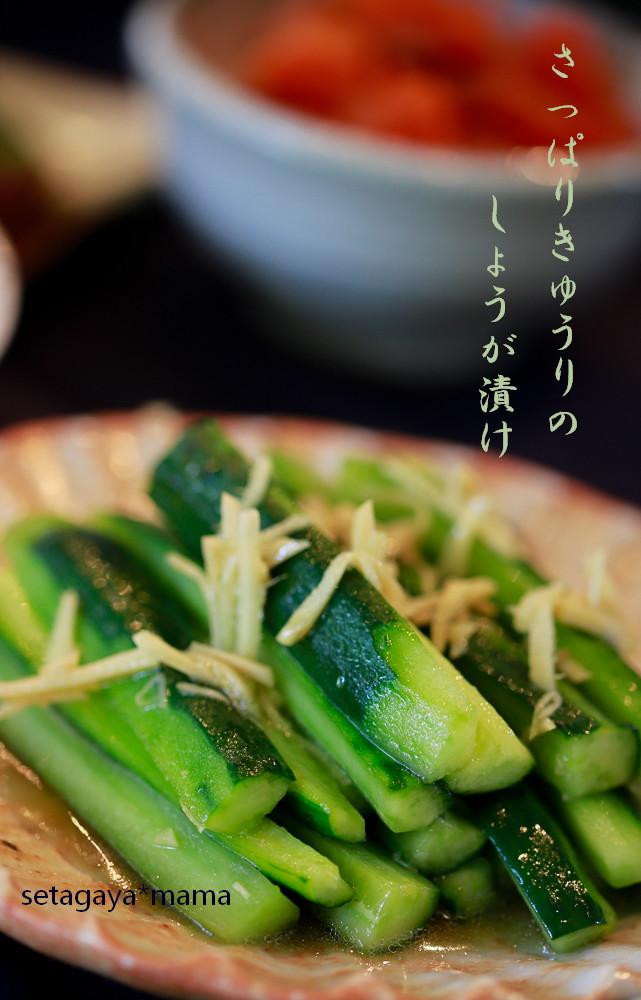 きゅうり_MG_0449