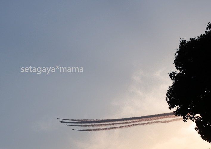 Blue Impulse _MG_1535