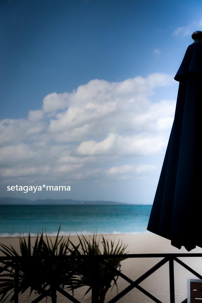 Blue Ocean _MG_6961