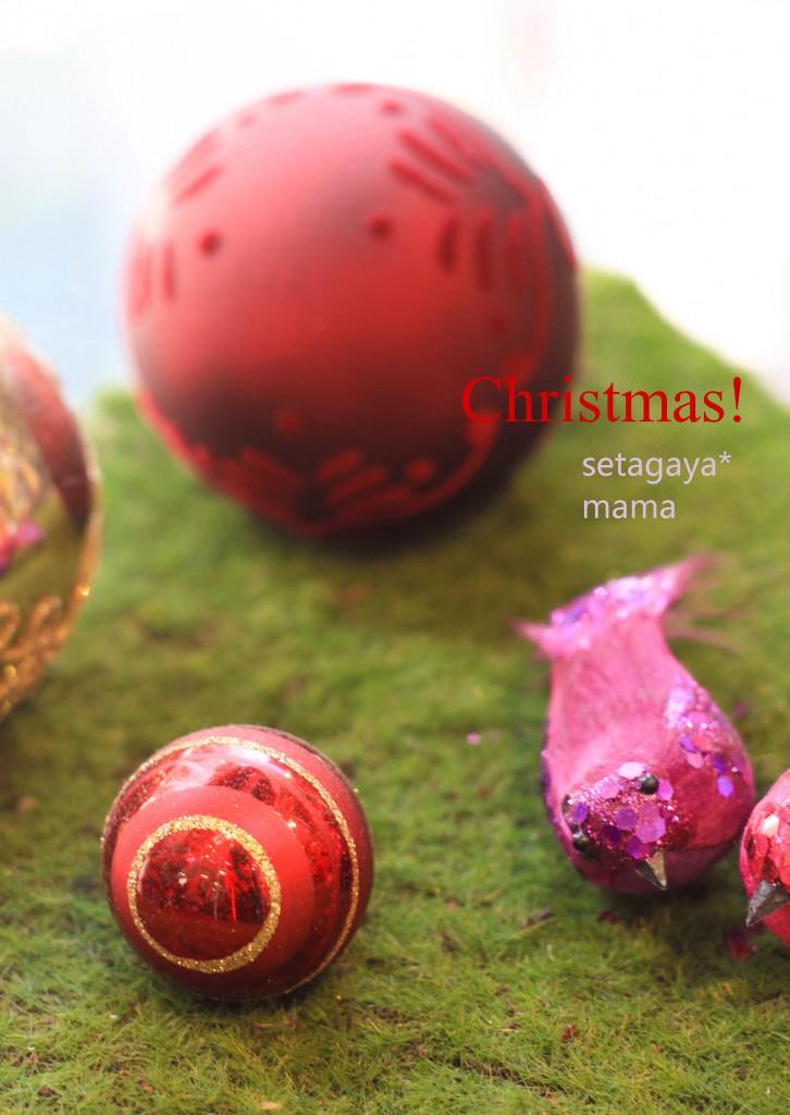Christmas IMG_4533