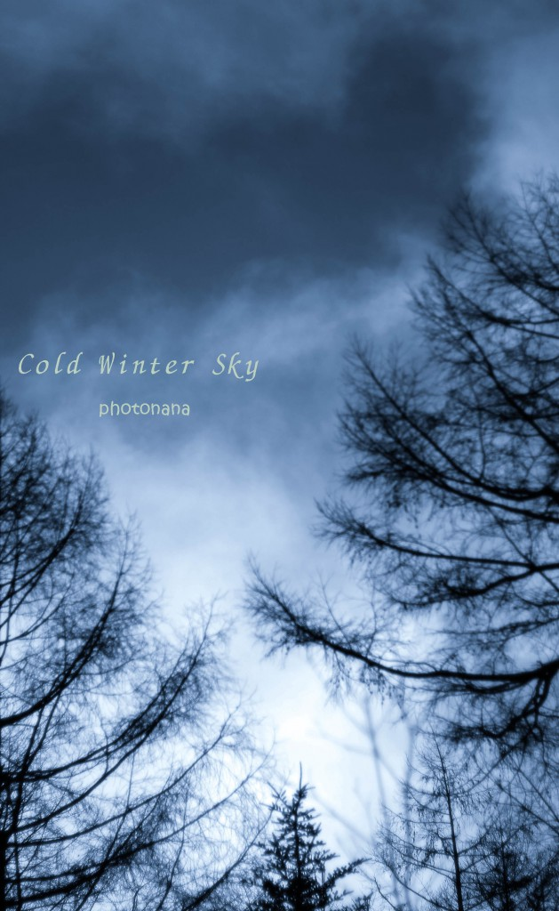 Cold Winter Sky