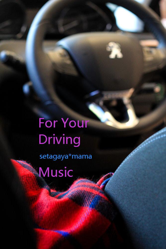 Driving IMG_7553