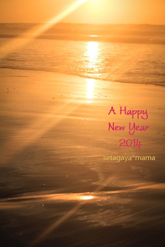 Happy New Year IMG_8557