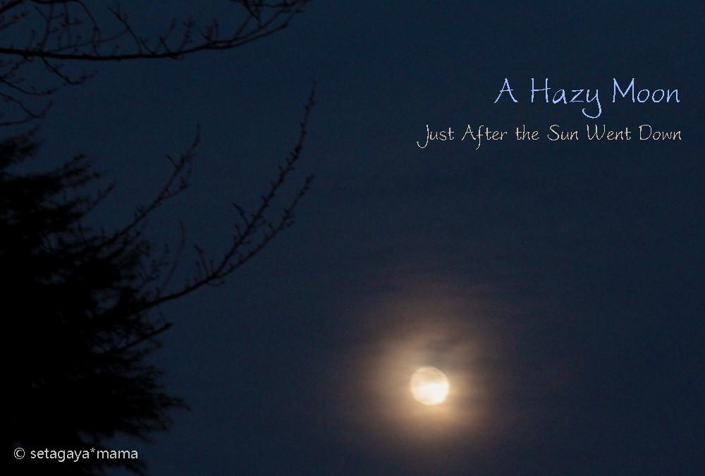 Hazy Moon IMG_1013-2