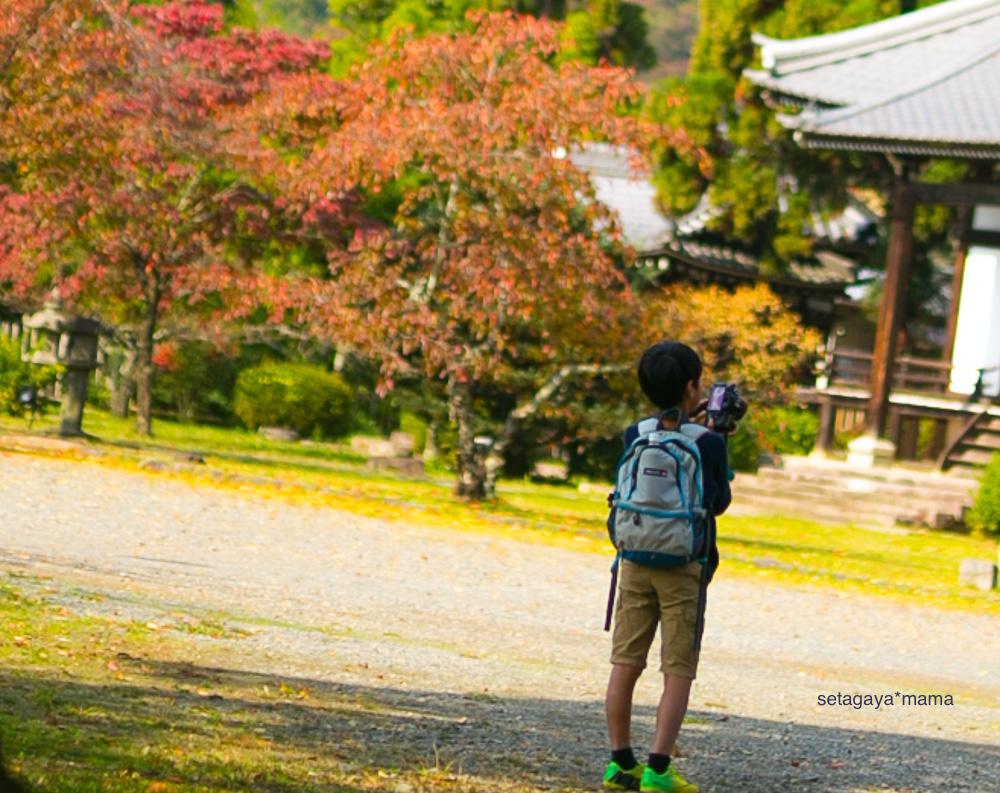Kyoto_MG_0320