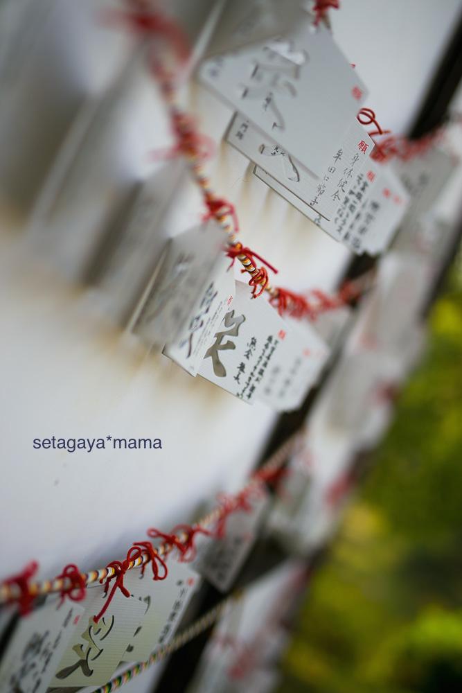 Kyoto_MG_0325