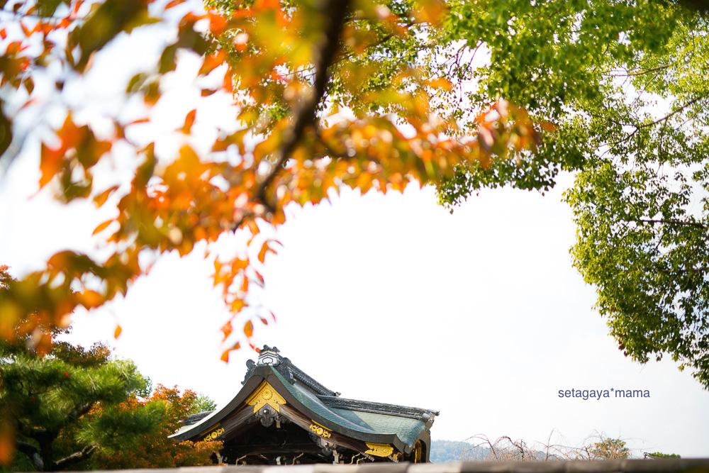 Kyoto_MG_0329