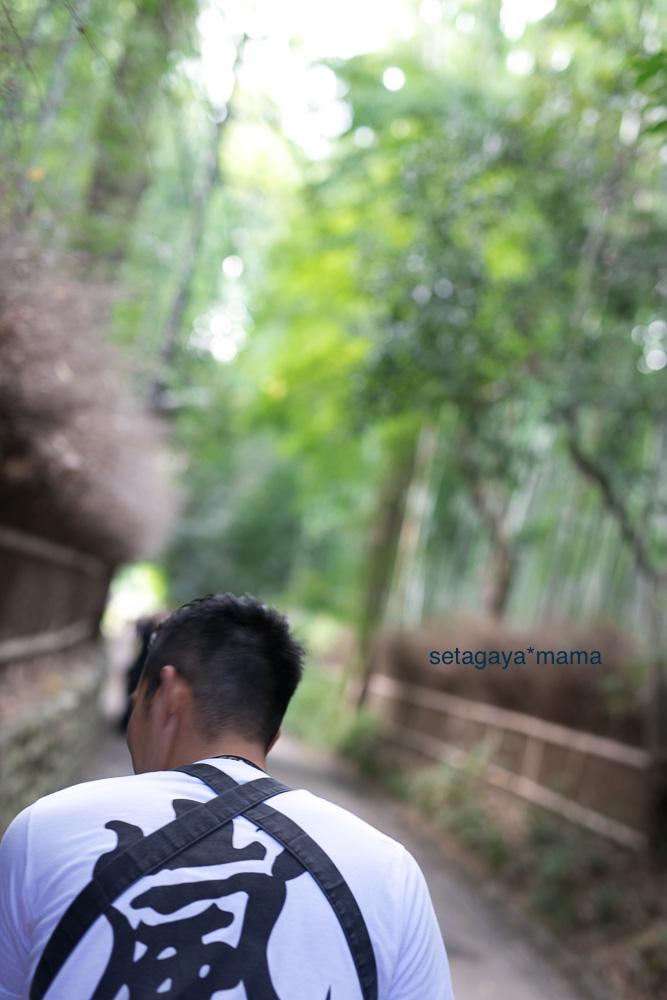 Kyoto_MG_0408