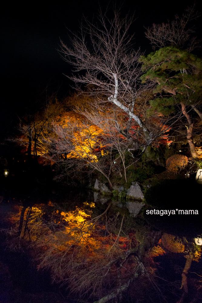 Kyoto_MG_2092