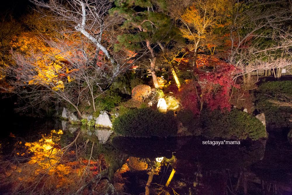 Kyoto_MG_2098