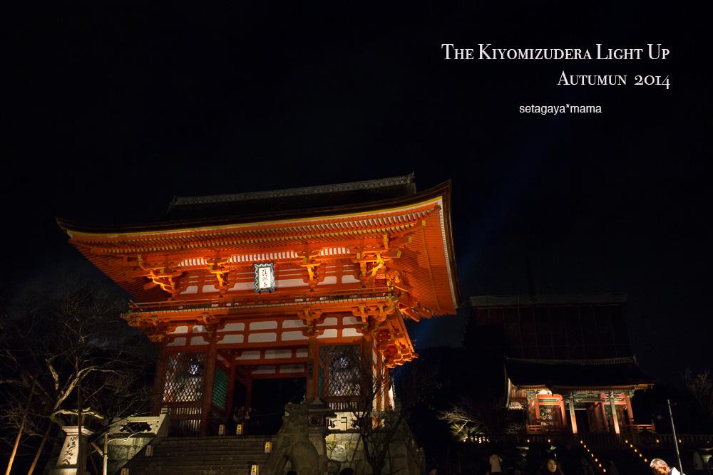 Kyoto_MG_2129