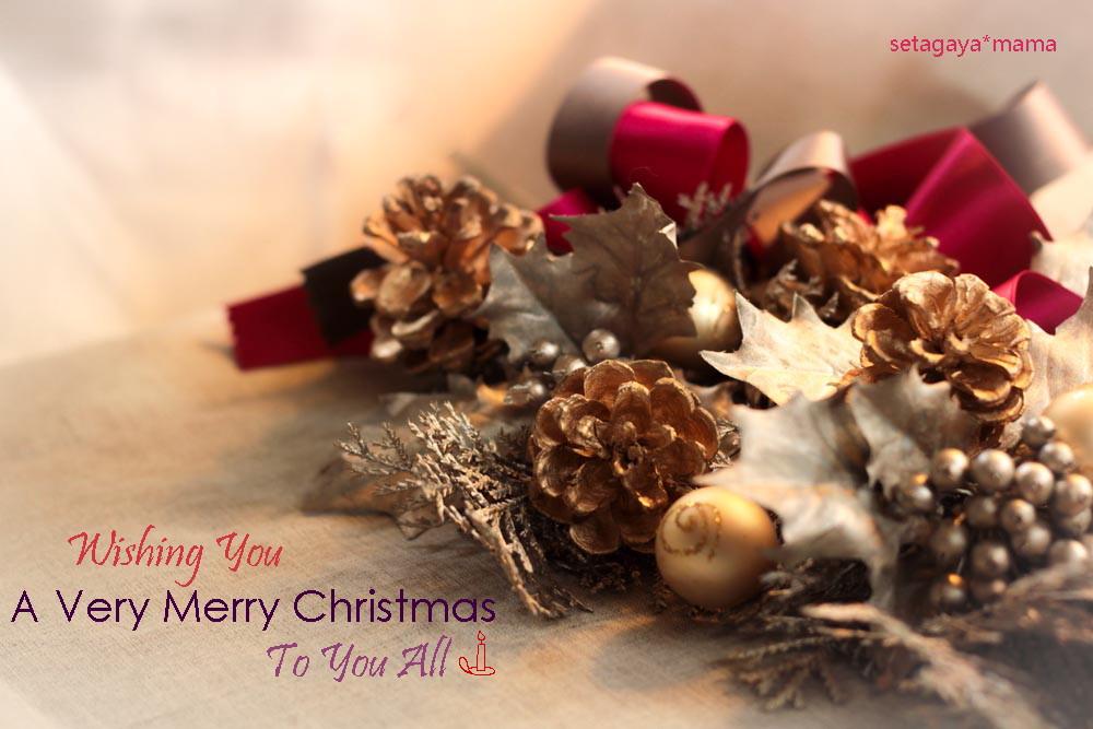 Merry Christmas 2013 IMG_1593