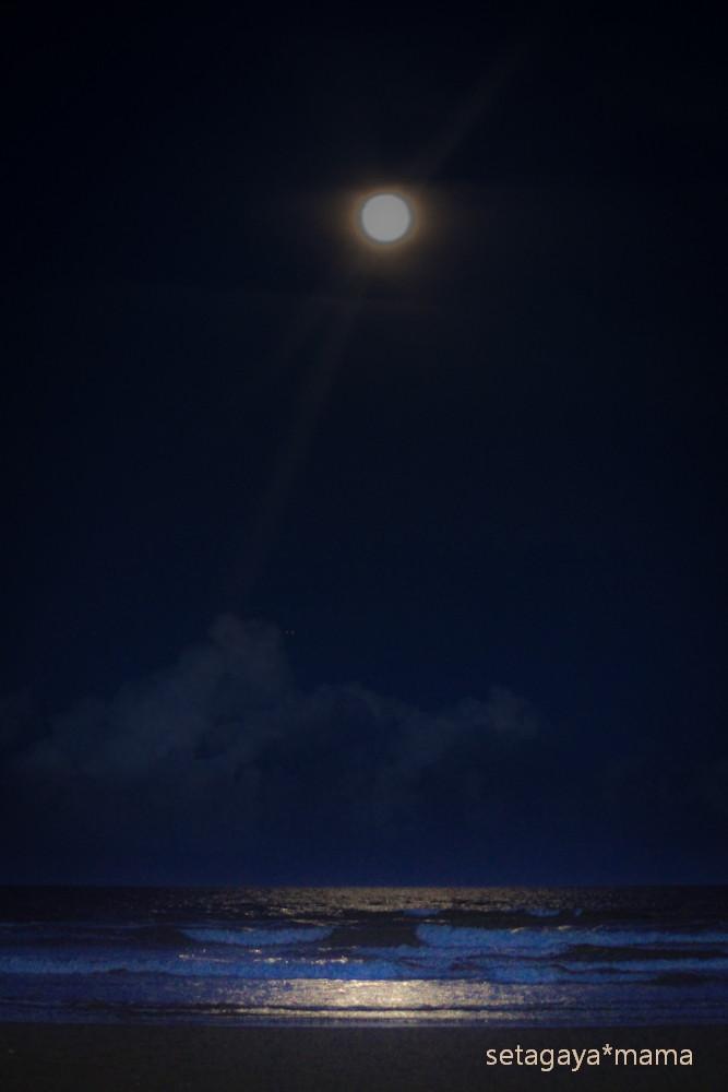 Moon IMG_8962