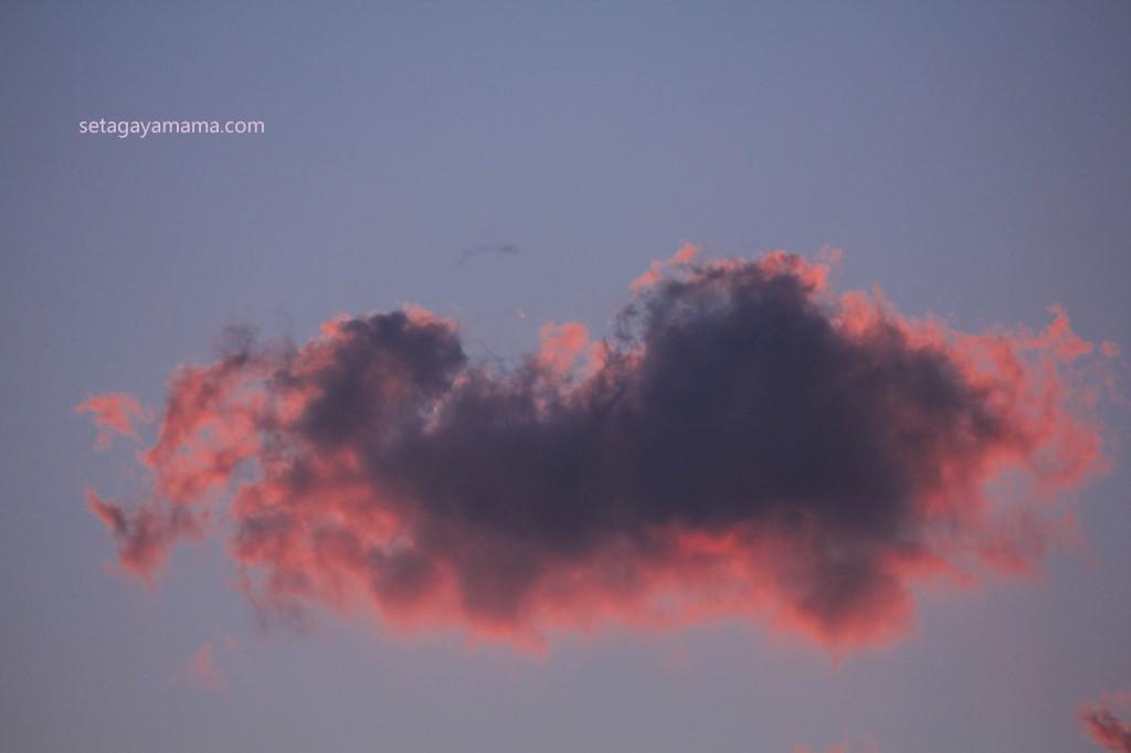 Pinky Sky IMG_3737