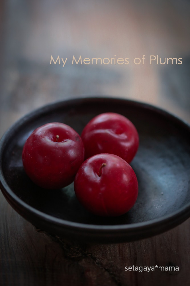 Plums _MG_2668