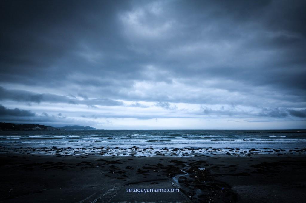 Rainy Season  IMG_2576