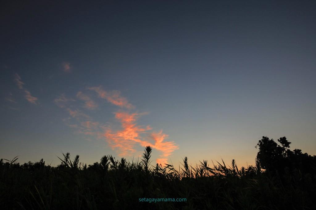 Sunrise IMG_8482
