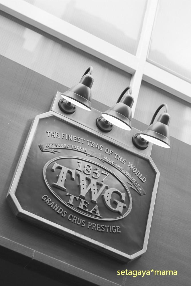 TWA IMG_8841