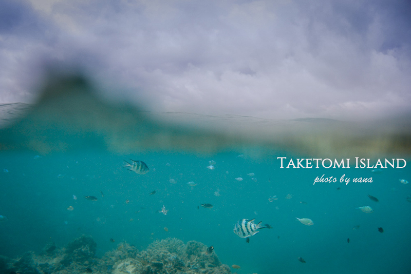 Taketomi-Diving_DSC0815