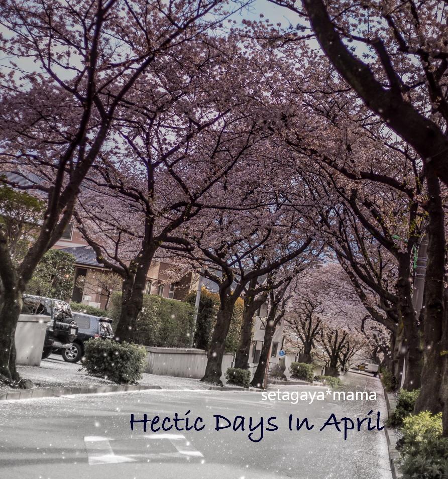 april _MG_8739