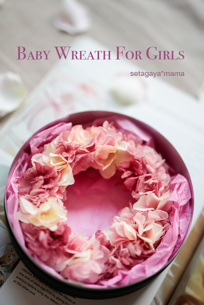 baby-wreath-_MG_1119