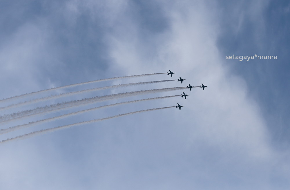 blue impulse _MG_1553