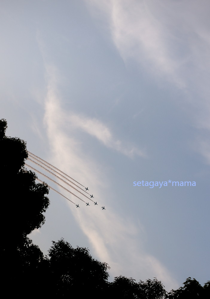 blue impulse _MG_1562