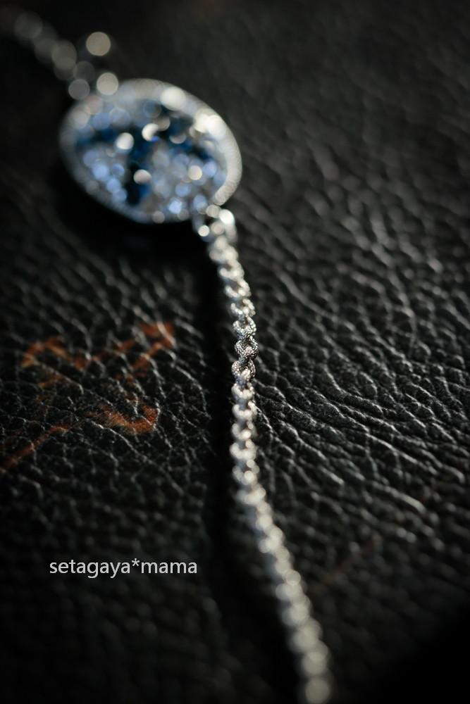 bracelet _MG_5543
