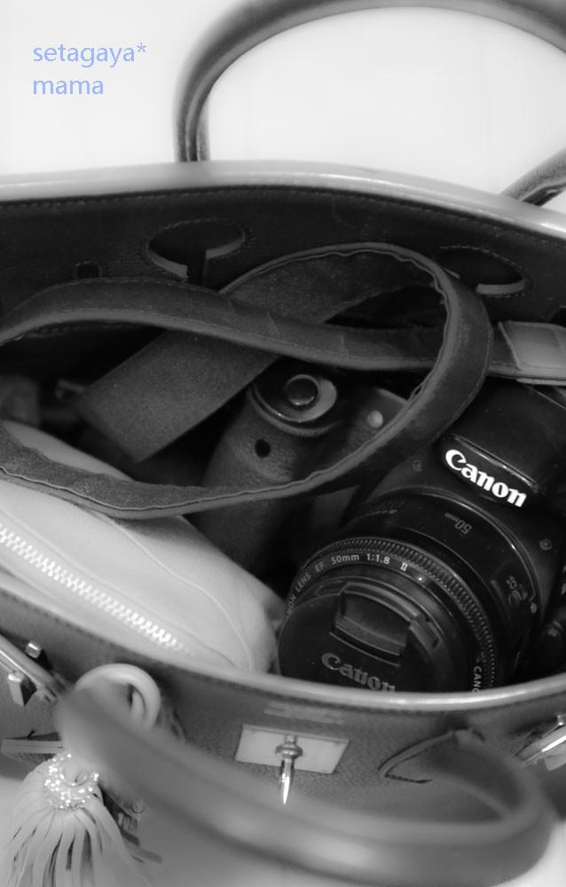 camera strap IMG_0206