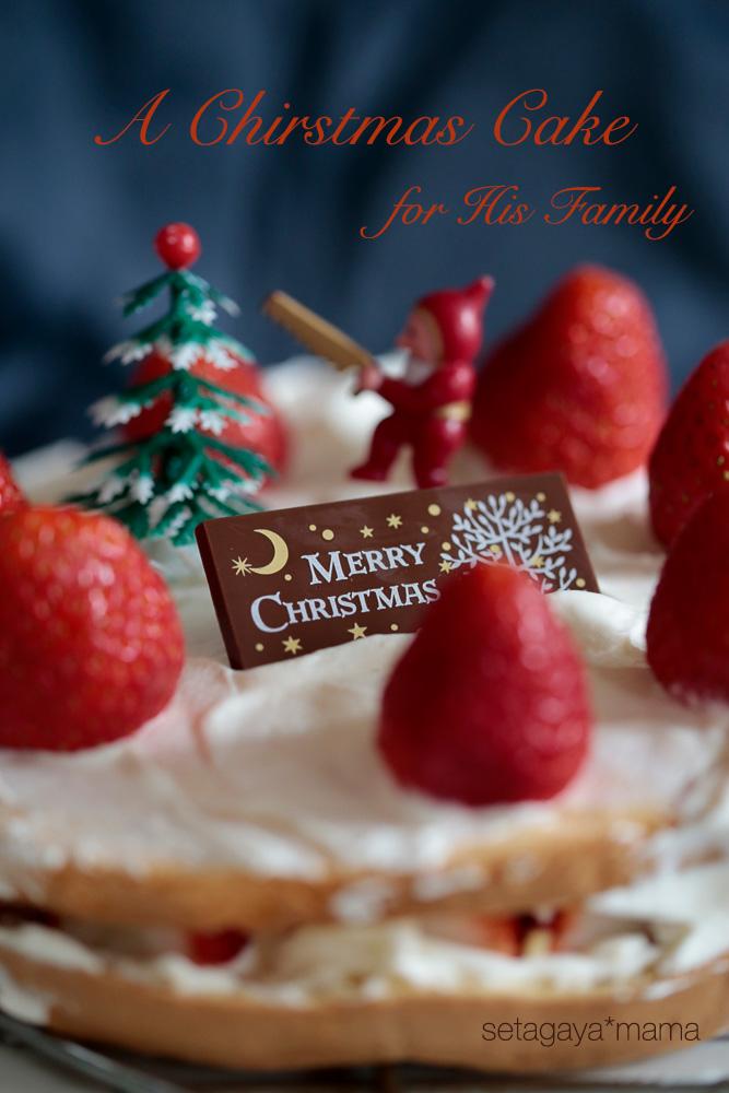 christmas-cake_MG_2813