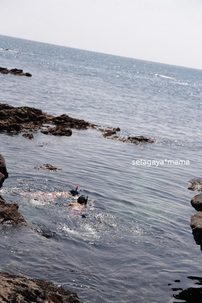 clear ocean _MG_4108