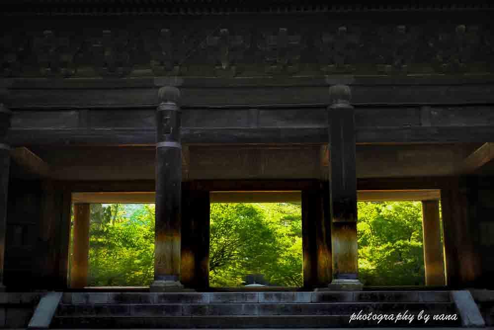 京都新緑1_MG_7844