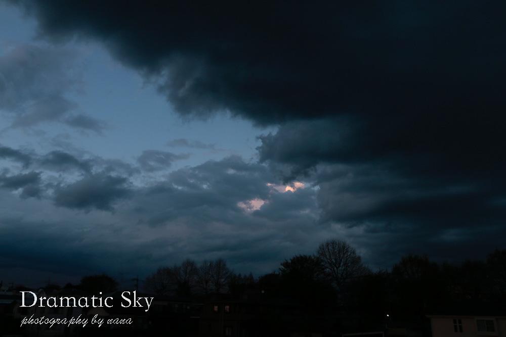 dramatic_MG_0973-3