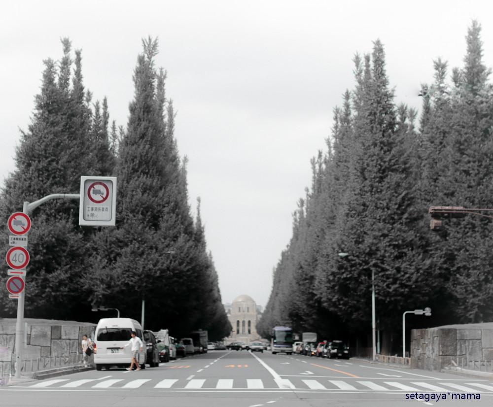 driving tokyo_MG_6876