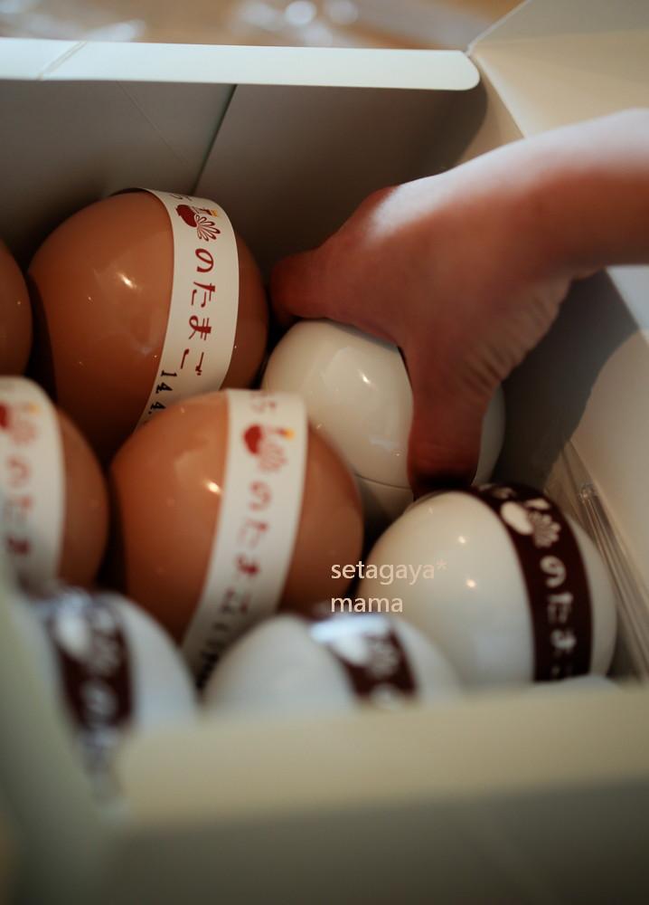 egg_MG_8481