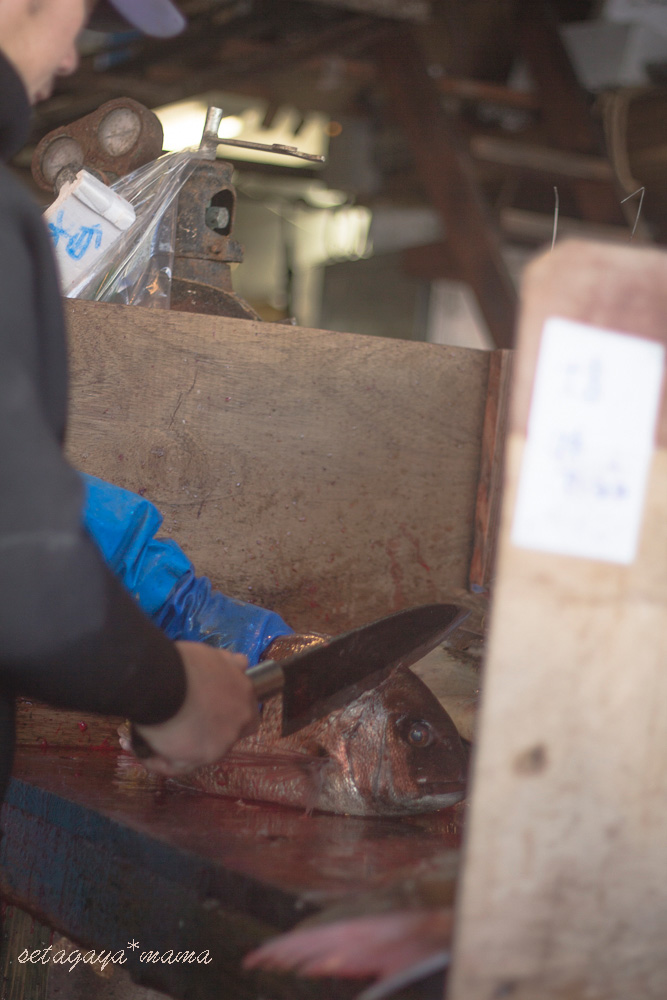 fish-market-IMG_4562