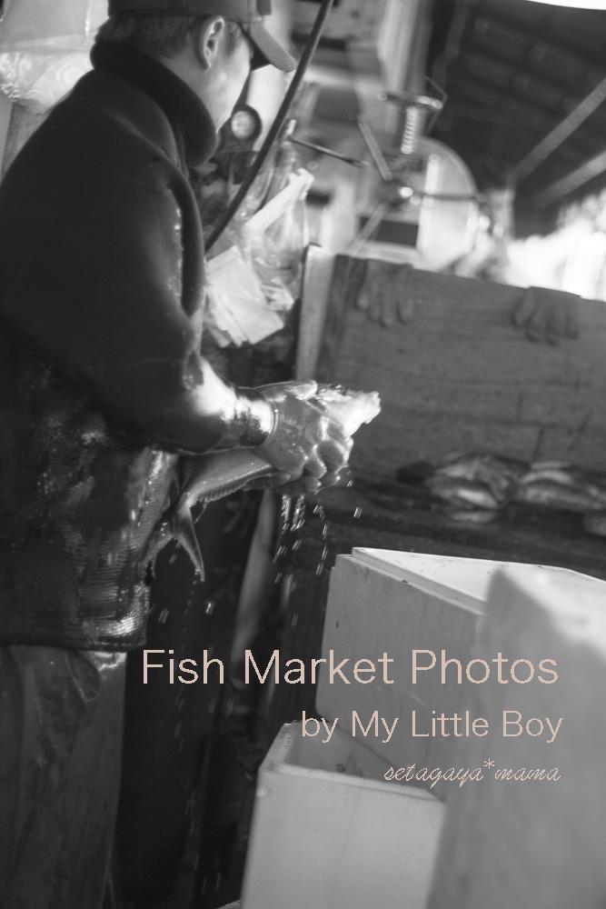 fish-market-IMG_4575
