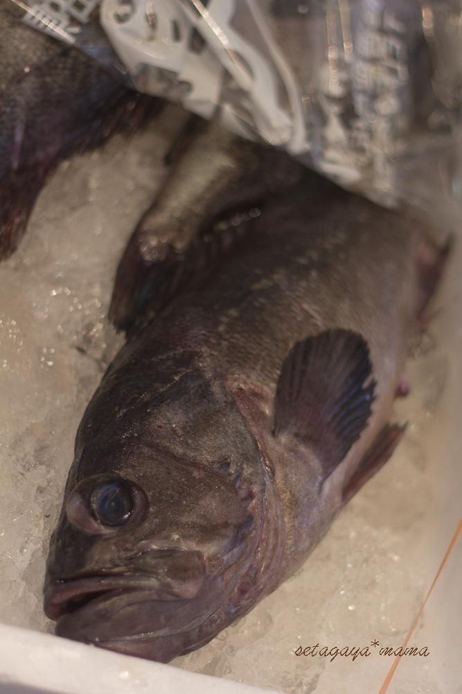 fish-market-IMG_4592