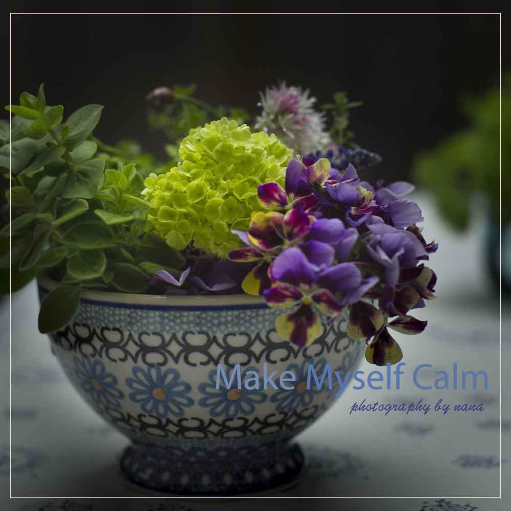 flower _MG_2744