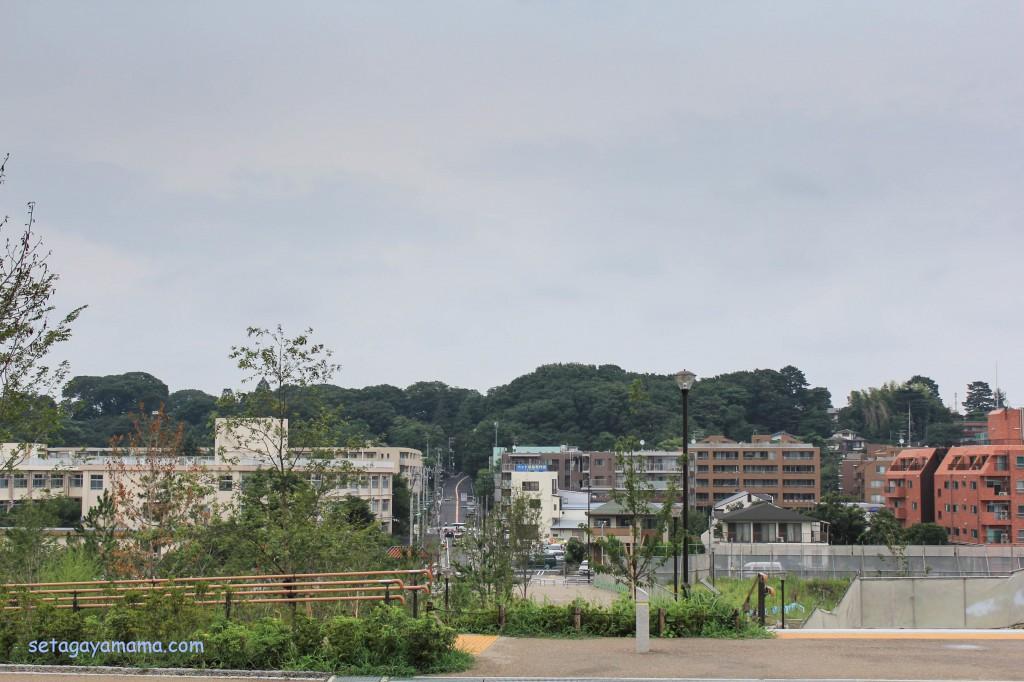 futako IMG_5532
