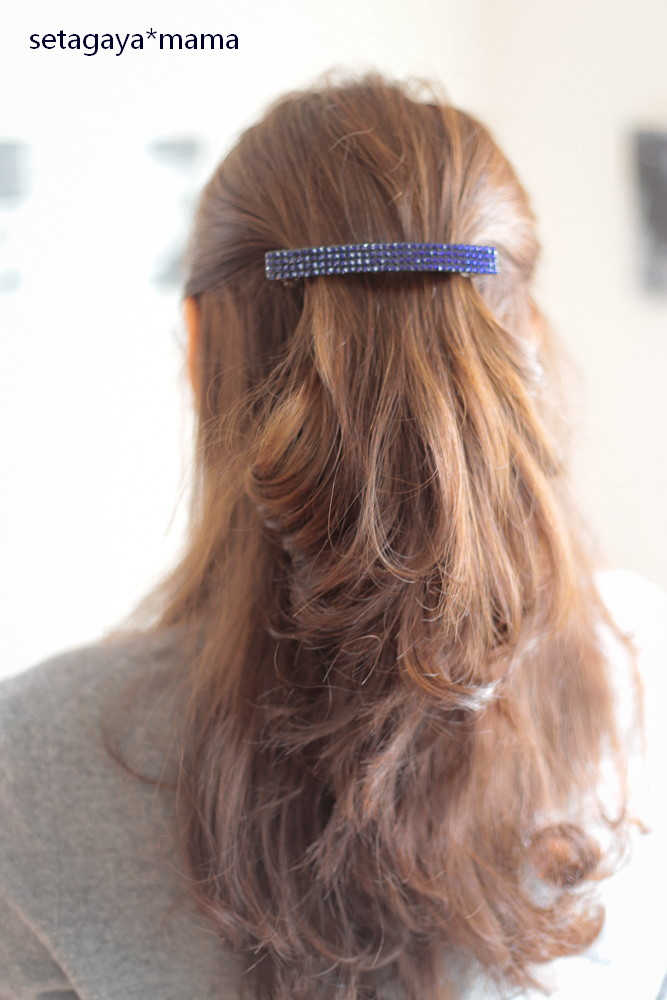 hair pin _MG_3106