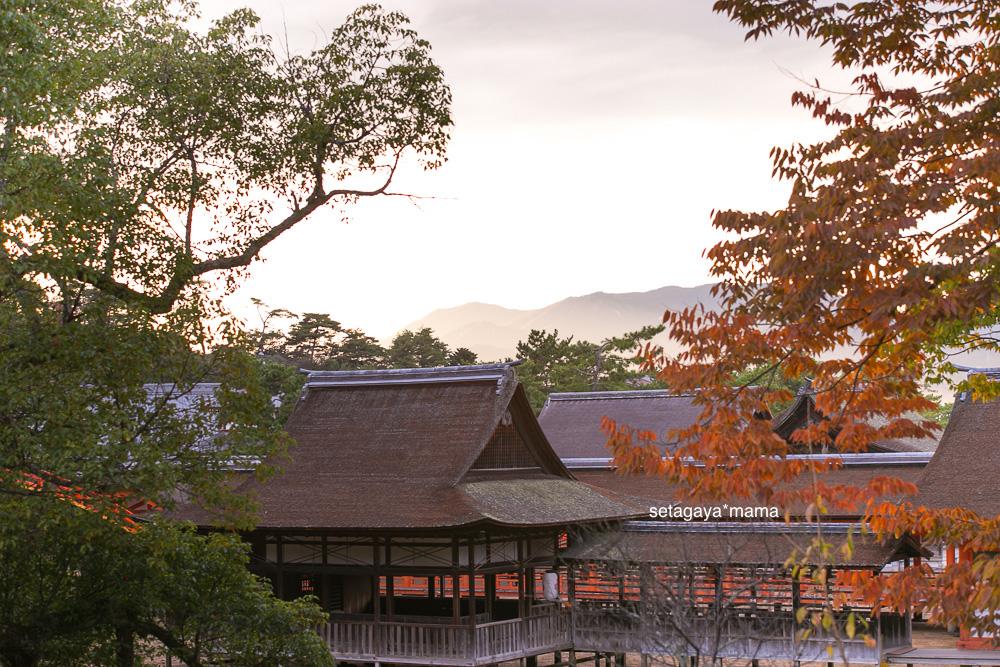 itsukushima_MG_0052
