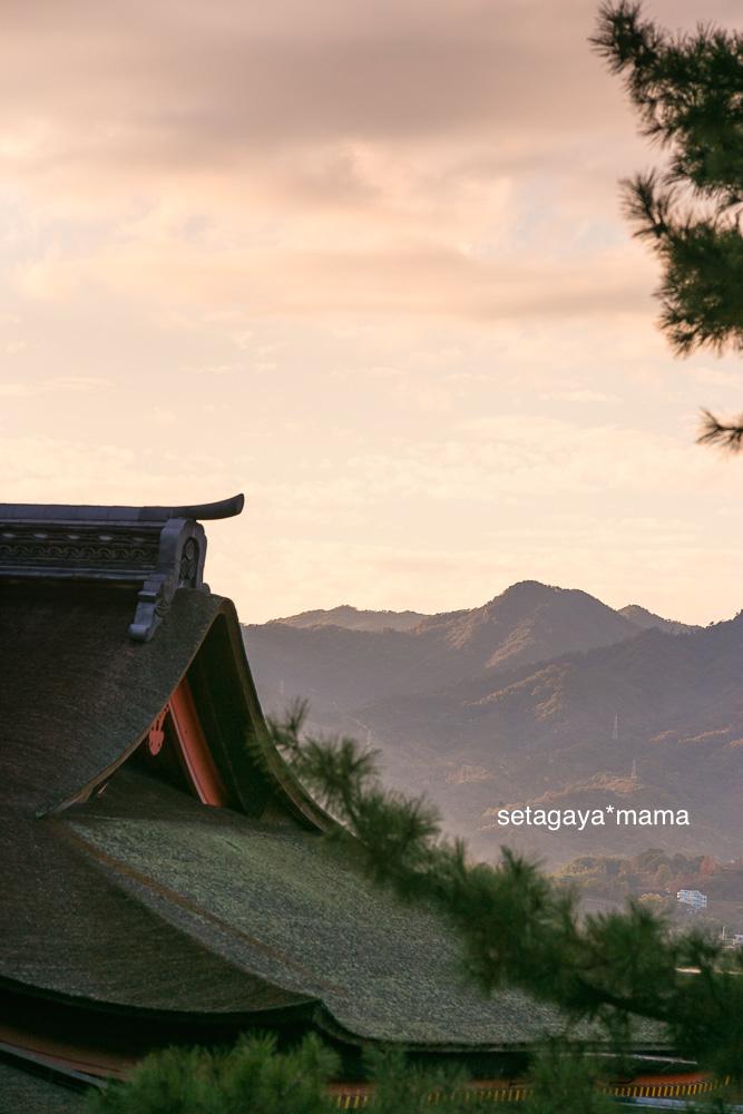 itsukushima_MG_0063