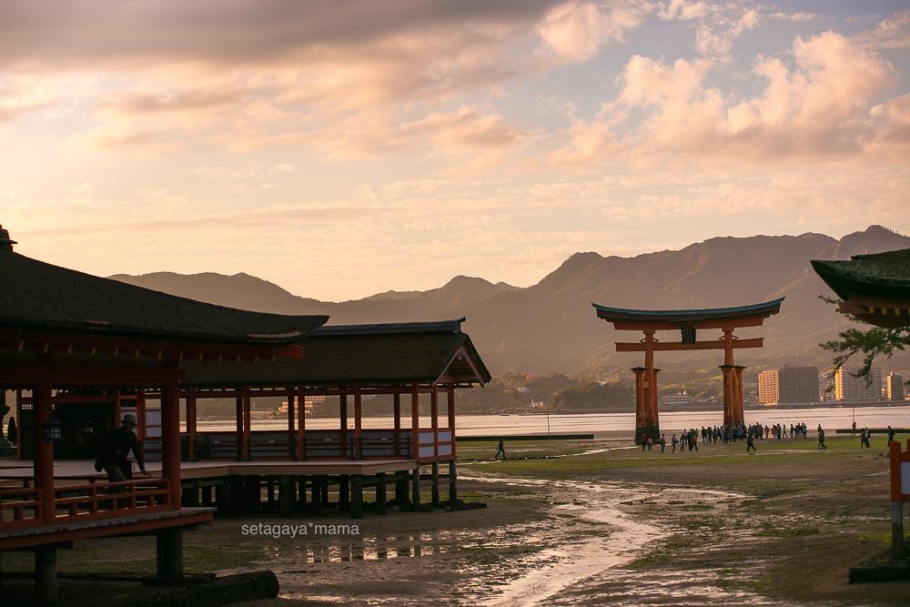 itsukushima_MG_0075