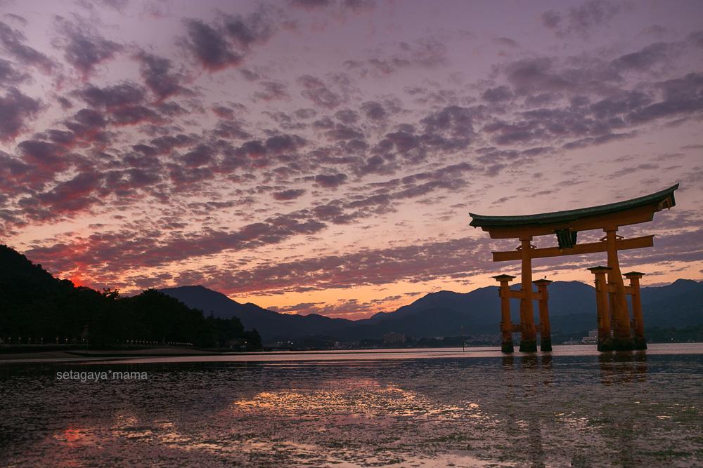 itsukushima_MG_0226